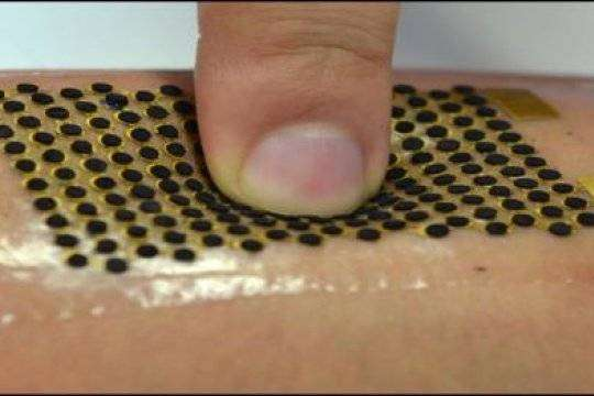 Extensible biofuel cell wearable equipment