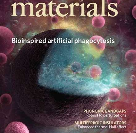 Latest Top 10 Outstanding Achievements in Materials